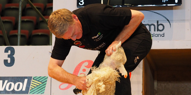 Prime Minister Bill English earned the first major victory of election year today when he beat shearing legend Sir David Fagan in a one-sheep-match. Photo / Supplied