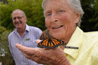 It was the 20th anniversary of the Te Puna Quarry Park on Sunday, Mary Parkinson helped release new butterflies into the park. Photo/George Novak