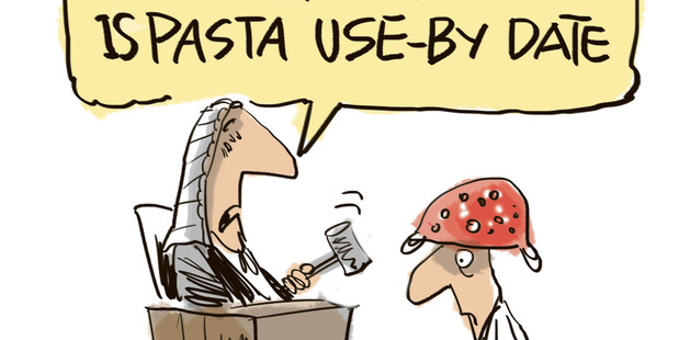 Dutch Court rules against a Pastafarian for wearing a colander on his head for a Drivers License picture. Illustration / Rod Emmerson