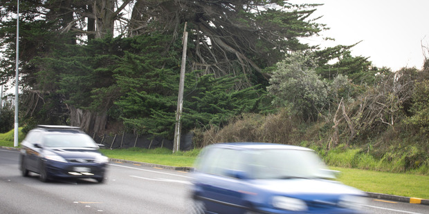 Cars whiz down George Bolt Memorial Dr, past the farm owned by one family since 1951. Photo/Jason Oxenham