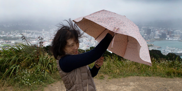 Parts of the country can expect high winds and rain today. File photo / Mark Mitchell