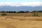 While farmland near the Ruahine Ranges has dried out Hawke's Bay is still not in a classified drought. Photo / Duncan Brown