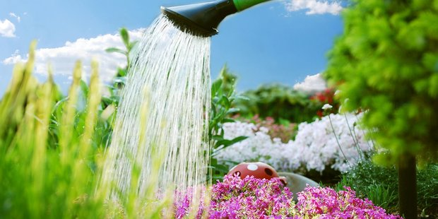 Be smart with your water usage, water supply is under pressure despite the rain. Photo/file