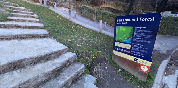 The fishing line was spotted on the walking and cycle path below Ben Lomond Scenic Reserve's tree line. Photo / Google