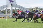 El Soldado crosses the finish line in first place at the Go Racing Syndications Avondale Cup at Ellerslie Racecourse. Photo / Trish Dunell.