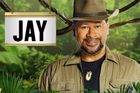 Kiwi actor Jay Laga'aia has made a surprise and very brief return to a reality show days after being eliminated.