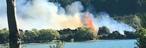 Watch: Wanaka fire