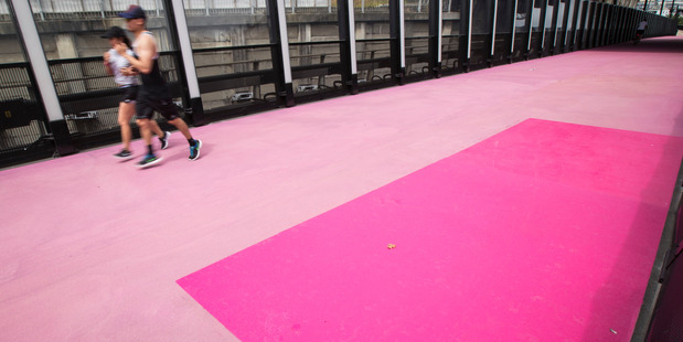 Small sections of fresh paving on the pink cycleway near the Karangahape Rd overpass, Auckland. 13 February 2017 New Zealand Herald Photograph by Jason Oxenham.