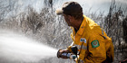 Firefighter fights the blaze on the Port Hills Christchurch. Photo / Christchurch Star, Martin Hunter
