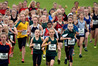 Hundreds of children battle it out in the AIMS Games cross country at Waipuna Park last year. Photo/file