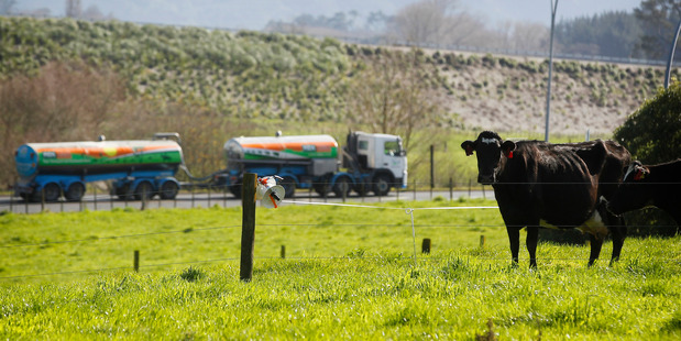 Expectations of a slight improvement in Fonterra's farmgate milk price forecast remain intact, despite a decline in GlobalDairyTrade prices.