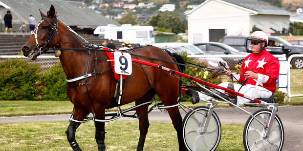 Maxim with Brent Mangos secures a debut victory on grass with the Ag Challenge Ltd Wanganui Cup. Photo / Bevan Conley