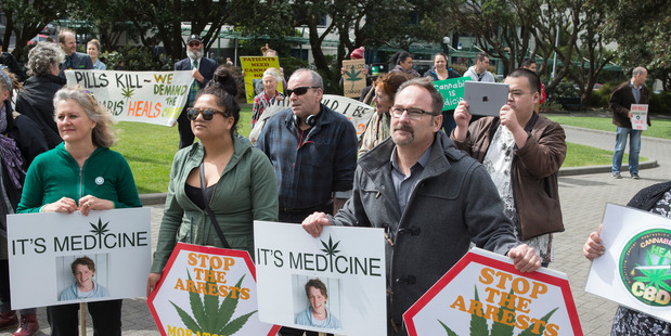 Supporters of Rose Renton's Medicinal Cannabis Petition at a rally at Parliament in 2016. PHOTO/ Mark Mitchell