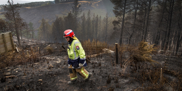 A firefighter dampens down hot spots in the Port Hills on Friday. Photo / Alan Gibson