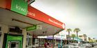 Kiwibank's half year profit was down 13 per cent on the same prior period. Photo/Warren Buckland.