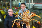 Kahungunu Assets Holding Company director Taine Randell (R) and Fiordland Lobster Company CEO Alan Buckner have partnered for growth.