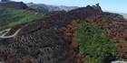 Watch: Aerial video shows Port Hills fire damage