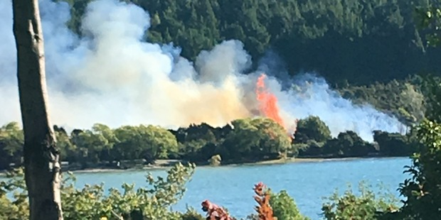 Loading Emergency services are fighting the fast-moving scrub fire in Dublin Bay. Photo / Annabel Langbein
