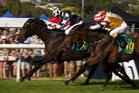 Kawi (left) has some tough rivals in the $200,000 Haunui Farm Classic at Otaki today. Photo / Nick Reed