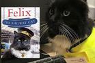 Meet Felix the Huddersfield Station Cat. Photo / Facebook