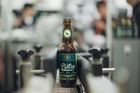 Cathay Pacific's limited edition beer has been especially brewed for high altitudes