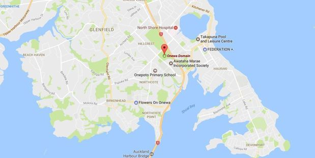 Tania Dalton collapsed while playing touch rugby at Onewa Domain, in Takapuna. Photo / Google Maps