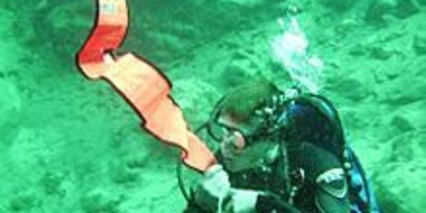 A diver's deflated safety sausage has been found near Karori. Photo / File
