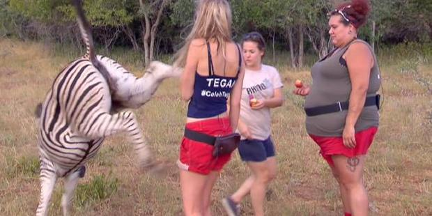 Loading Tegan Martin at the moment she meets the wrong end of the zebra. Photo/Channel 10