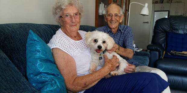 Loading Betty and Fred Service with their new pup, Danny, a bichon frise maltese cross. Photo/Ruth Keber