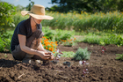 The value of community gardens has become so widely recognised they're popping up everywhere. Photos / Getty Images