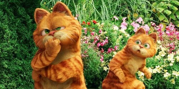 Is Garfield male or female? The internet has erupted in a storm of debate over the gender of the iconic character.