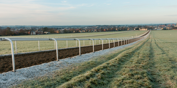 Newmarket is home to two horseracing tracks. Photo / Supplied