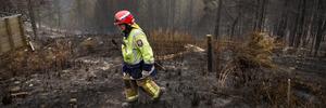 Port Hills fires: 11 cordons still active