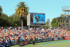 SHAFTED: McLean Park has been unfairly maligned as a cricket venue, writes Mark Story. PHOTO FILE