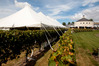 Craggy Range Winery will host  speakers. Photo / Warren Buckland