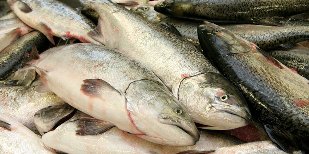 New Zealand King Salmon said it was on track to meet its prospectus target for the full year.