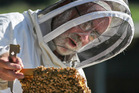 NO HONEY: Beekeeper Kevin Tinker has experienced the worst season for honey production in the last ten years. PHOTO/WARREN BUCKLAND.