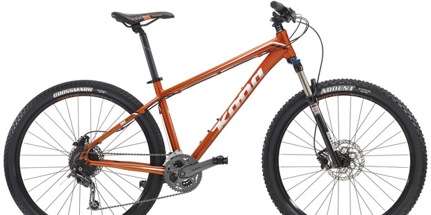 HAVE YOU SEEN THIS BIKE? A bike like this - a Kona 2016 blast - was stolen from two boys at the Whangarei Falls.