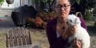 Watch: Watch: Owner reunited with lost pet dog