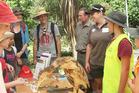 Te Pahu School students learn about a bittern.