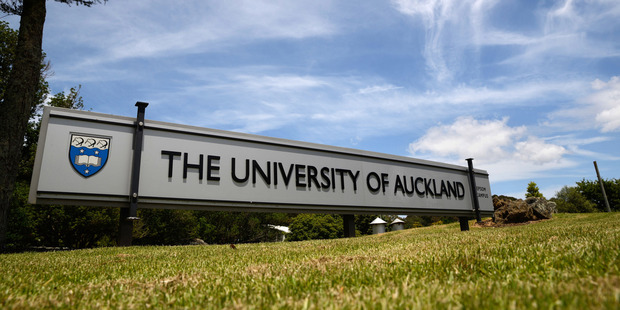 Loading The University of Auckland staff member was fired. Photo / 123RF