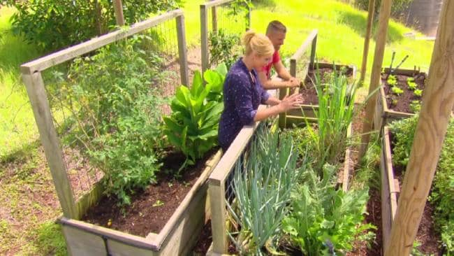 Pete Evans grows his own herbs and vegetables. Photo / Channel 7