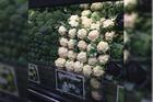 Cauliflower was $9.99 at New World in Wellington yesterday. Photo / Supplied