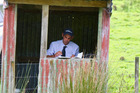 Leighton Bellringer of Whangamomona judges his first dog trial at the Waihi-Waitara Club.