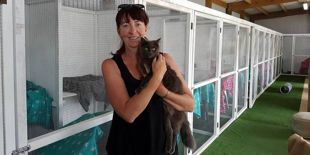 Cara Hayes at her new cattery Pawsome.