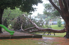 Somewhere under there is Jaycee Park's train, which no one was playing on when the tree came down.