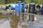 Oil and oil filters dumped on Piha Rd.  Photo / Supplied Sarah Munro