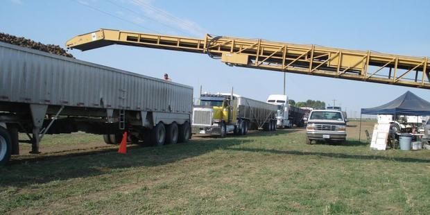 Potatoes are transferred into an 18-wheeler semi truck, with more queuing behind it. Photo / Supplied