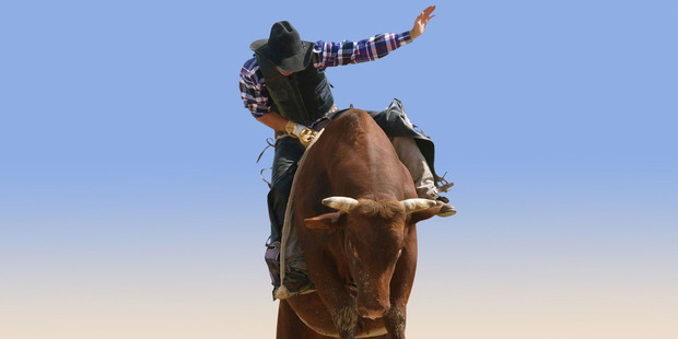 Rodeo is on the way out. It's on the wrong side of history. Photo / 123RF