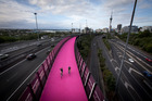 Great international cities need cool, weird and wonderful things. The big pink track is just that. Photo / Dean Purcell